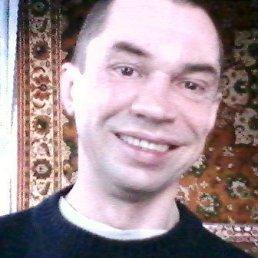Сергей, 45 лет, Чигирин