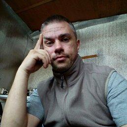 Михаил, 40 лет, Балашиха