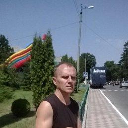 Геннадий, 52 года, Дубровица