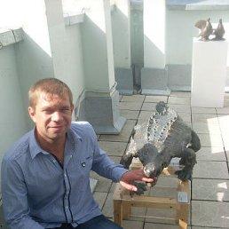 Вова, Вязьма, 39 лет