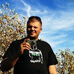 Юрий, 36 лет, Гнивань
