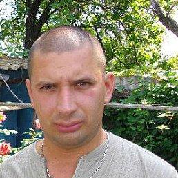 Дмитрий, 33 года, Приморск