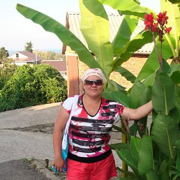 Светлана, 42 года, Канаш