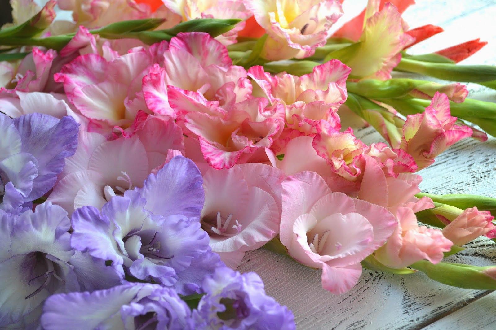 Картинки красивые корзины с цветами конце