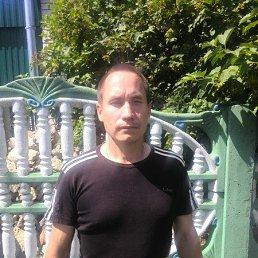 Сергей, 42 года, Апастово