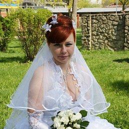 Виктория, 29 лет, Константиновка
