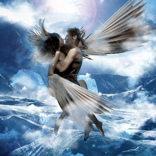 реакция картинки а мне бы крылья и к тебе лететь поняли, что вас