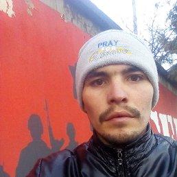 Петя, 27 лет, Косов