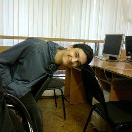 Антон, 28 лет, Лыткарино