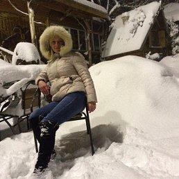 Карина, 44 года, Сочи