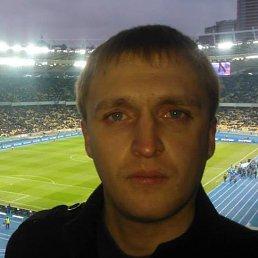 Саня, 29 лет, Трускавец