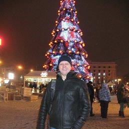 Александр, 51 год, Змиев