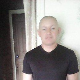 Дмитрий, 44 года, Константиновск