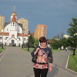 Светлана, 43 года, Электросталь