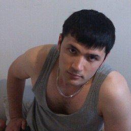 Тимур, 29 лет, Домодедово