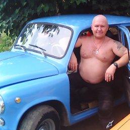 Владимир, 46 лет, Северодонецк