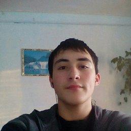 Рустам, 21 год, Стерлитамак