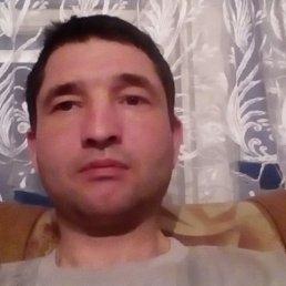 Денис, 39 лет, Курильск