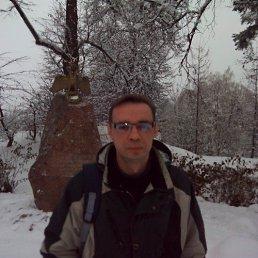 Александр, 46 лет, Лосино-Петровский