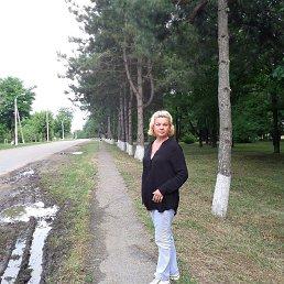 Людмила, 60 лет, Протвино