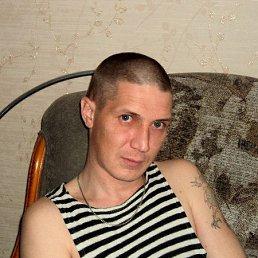 Сергей, 37 лет, Березники