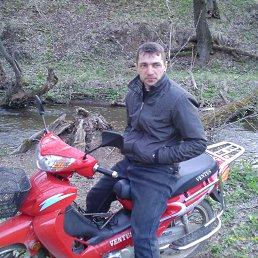 Николай, 37 лет, Светлодарское
