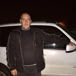 Сергей, 37 лет, Котовск