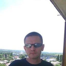 Дмитрий, 37 лет, Пироговский