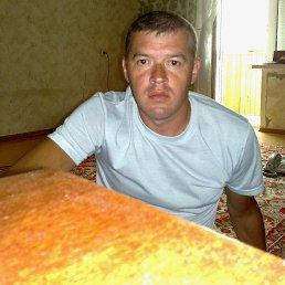Олег, 51 год, Тюмень