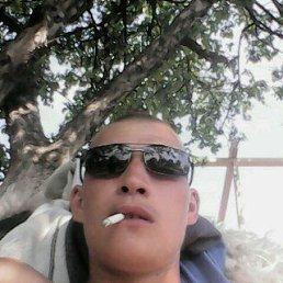 Ренат, 29 лет, Морки