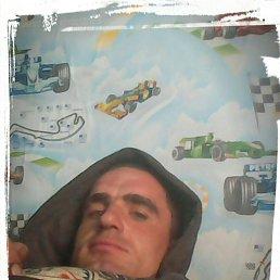 Сергей, 29 лет, Новопокровка