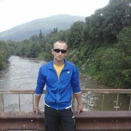 Володимир, 30 лет, Ивано-Франковск