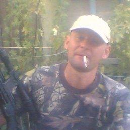 Алексей, 39 лет, Целина