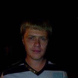 Дима, 34 года, Павловская