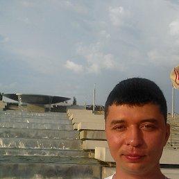 Аркадий, 30 лет, Динская