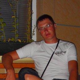 Денис, 32 года, Сурское