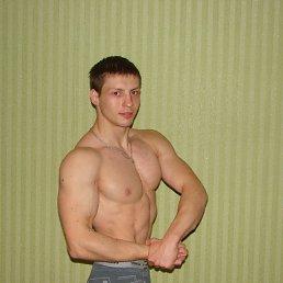 Егор, 29 лет, Курск