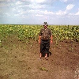 Александр, Горный, 55 лет