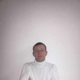 Максим, 27 лет, Волгоград