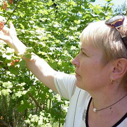 Наталья, 62 года, Ахтырка