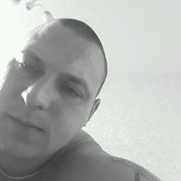 Седой, 29 лет, Воскресенск
