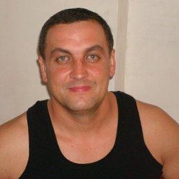 Денис Болюх, 39 лет, Белая Церковь