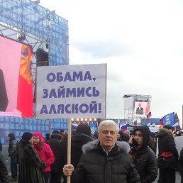Александр, 65 лет, Высоковск