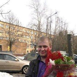 Серёга, 29 лет, Электросталь