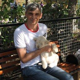 Григорий, 52 года, Гуляйполе