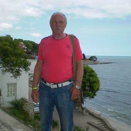 Владимир, 62 года, Полонное