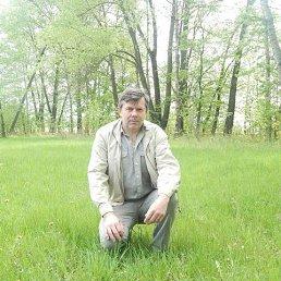 Сергей, 54 года, Суджа