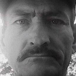 Виталий, 60 лет, Рубцовск