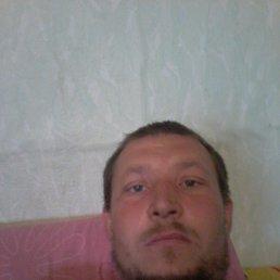 Владимир, 37 лет, Тамала