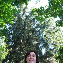 Наталия, 64 года, Желтые Воды